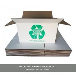 100 x Cartons standards
